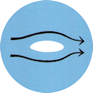 Ikona D1